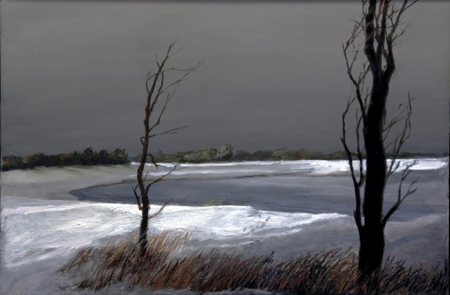 Trees, Frozen Lake